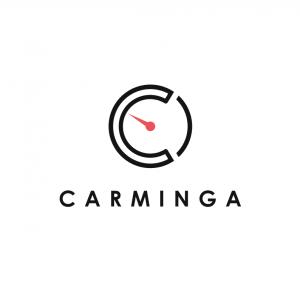 Logo carminga